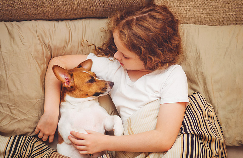 Why Dogs are called Human's best friends?