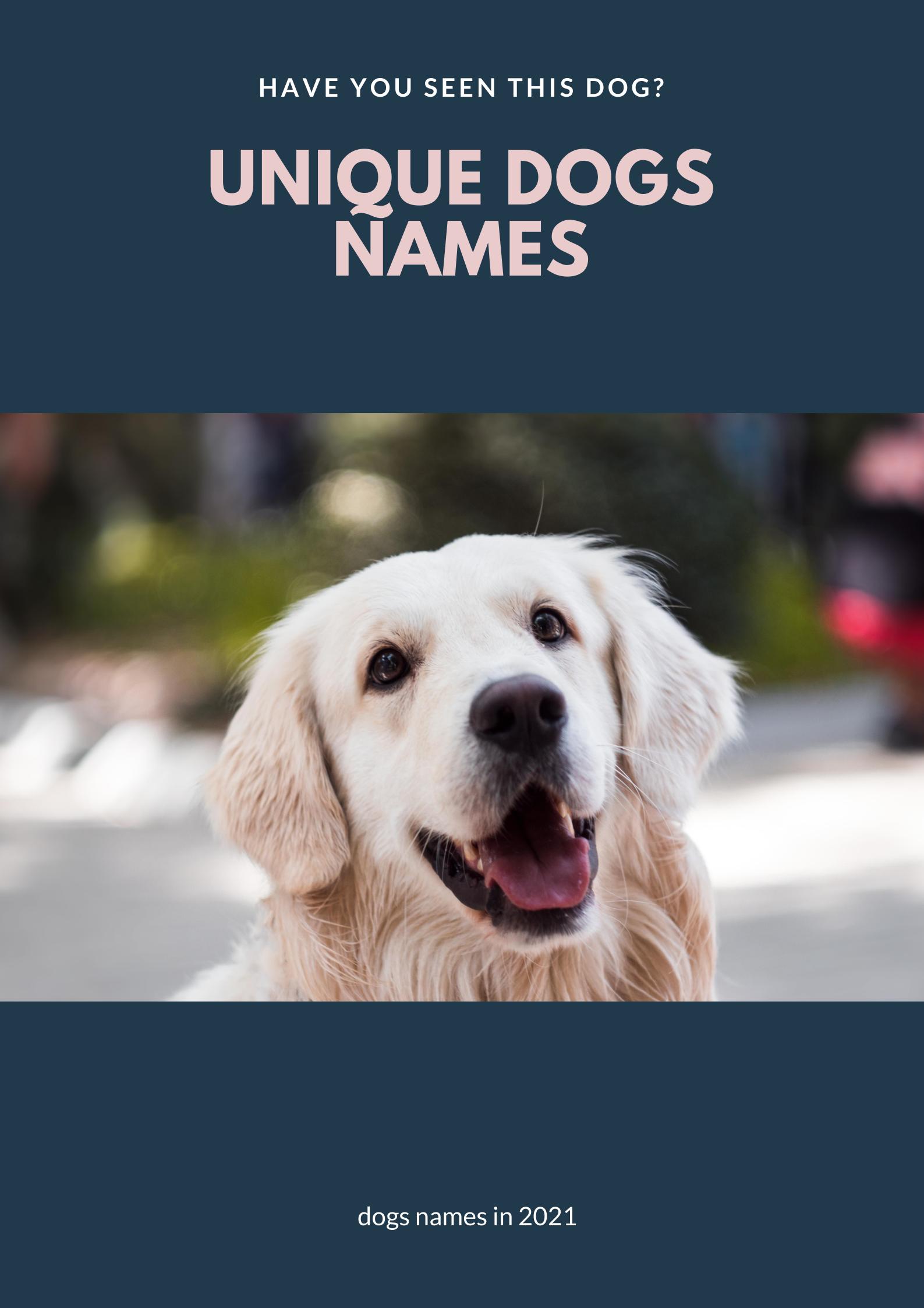 unique dogs names